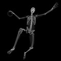 Skeleton Playing Handball by Sciepro/science Photo Library