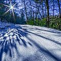 Snow Covered Road Leads Through The Wooded Forest by Alex Grichenko
