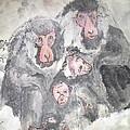 Snow Monkey Snow Leopard Album by Debbi Saccomanno Chan
