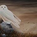 Snowy Owl by Charles Owens