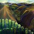Sonoma Hills by Karen Trout