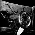Sopwith Pup by David Patterson