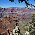 South Rim Of The Grand Canyon by Thomas R Fletcher
