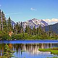 Spring In The Cascades by Lynn Bawden