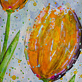Spring Tulips by Jacqueline Athmann