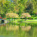 Springtime Reflections by Geoff Crego