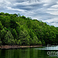 Stonewall Jackson Lake Wildlife Management Area by Thomas R Fletcher