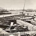 Suez Canal Port Said by Granger