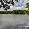 Summer Time At Moraine View State Park by Alan Look
