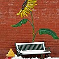 Sunflower And Snow by Chris Berry