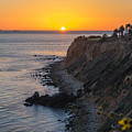 Sunset At Point Vincent Lighthouse by Michelle Choi