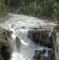 Sunwapta Falls by David Birchall