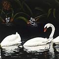 Swans IIi by Jan Reid