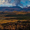 Taiga In Fall by Stephan Pietzko