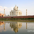 Taj Mahal by David Davis