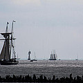 Tall Ships by Sue Conwell