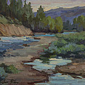 Teanaway River by Diane McClary