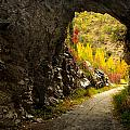 The Cave by Guido Montanes Castillo