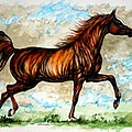The Chestnut Arabian Horse by Angel Ciesniarska