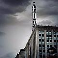 The Detroit Fox by Natasha Marco