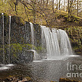 The Falls by Anthony Morgan
