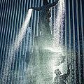 The Genius Of Water  by Scott Meyer