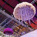The International Orchid Show In Taiwan by Yali Shi