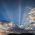 The Light by Mitch Shindelbower