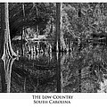 The Low Country by Frederick H Claflin