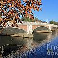 The River Thames At Hampton Court London by Julia Gavin