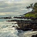 The Sea by Sharon Mau
