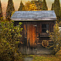 The Shed by Jessica Jenney