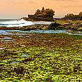 The Tanah Lot Temple - Bali - Indonesia by Luciano Mortula