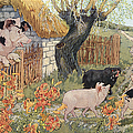 The Three Little Pigs by Granger