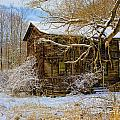 This Old House by Ronald Lutz