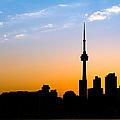 Toronto Skyline by Sebastian Musial
