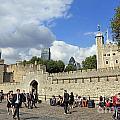 Tower Of London by Julia Gavin