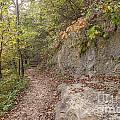 Trails by Ashley M Conger