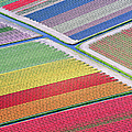 Tulip Fields Between Sassenheim And by Atlantide Phototravel