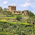Tuscany - Montalcino by Joana Kruse