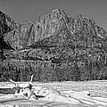 Snowy Yosemite by Priscilla De Mesa