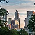 Uptown Charlotte North Carolina Cityscape by Alex Grichenko