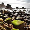 Ursa Beach by Carlos Caetano