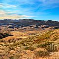 Vast View by Robert Bales