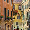 Venice by Brian Jannsen