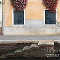 Venice Canal Shutters With Dog And Flowers Horizontal by Robyn Saunders
