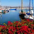 Ventura Harbor by Lynn Bauer