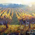 Vineyard Sunset by Carolyn Jarvis
