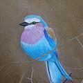 Violet-breasted Roller Bird by Lynn Quinn