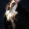 Vulture by Paulette Thomas